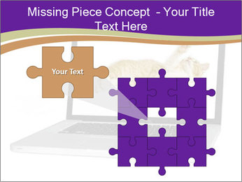Cat Laptop Wallpaper PowerPoint Template - Slide 45