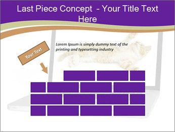 Cat Laptop Wallpaper PowerPoint Template - Slide 46