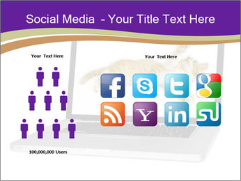 Cat Laptop Wallpaper PowerPoint Template - Slide 5