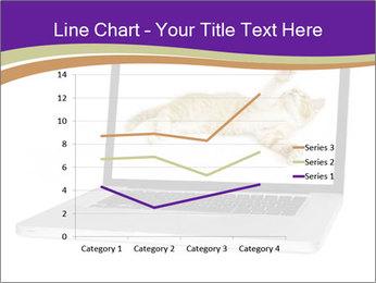 Cat Laptop Wallpaper PowerPoint Template - Slide 54