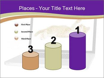 Cat Laptop Wallpaper PowerPoint Template - Slide 65