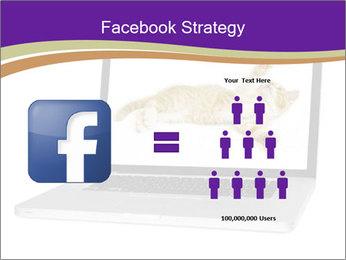 Cat Laptop Wallpaper PowerPoint Template - Slide 7