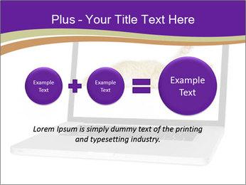 Cat Laptop Wallpaper PowerPoint Template - Slide 75