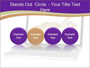 Cat Laptop Wallpaper PowerPoint Template - Slide 76