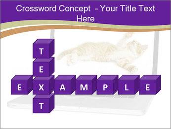 Cat Laptop Wallpaper PowerPoint Template - Slide 82