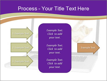 Cat Laptop Wallpaper PowerPoint Template - Slide 85