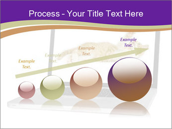 Cat Laptop Wallpaper PowerPoint Template - Slide 87