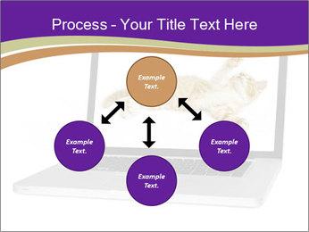 Cat Laptop Wallpaper PowerPoint Template - Slide 91