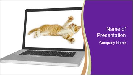 Cat Laptop Wallpaper PowerPoint Template
