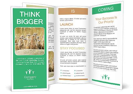 0000089627 Brochure Template