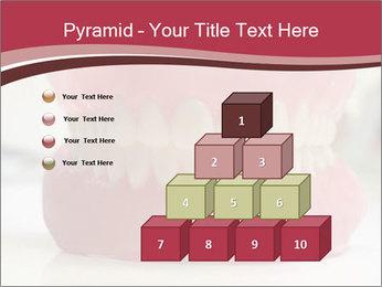 Teeth Model PowerPoint Template - Slide 31