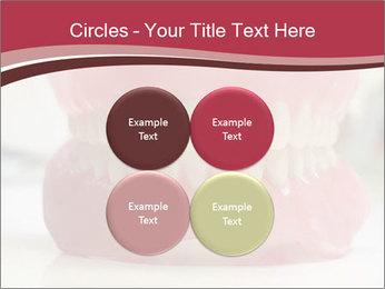 Teeth Model PowerPoint Template - Slide 38
