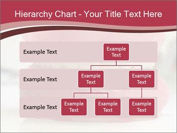 Teeth Model PowerPoint Template - Slide 67