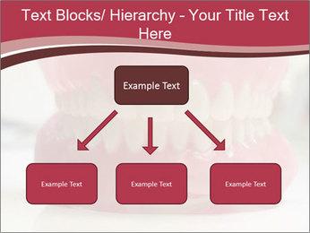 Teeth Model PowerPoint Template - Slide 69