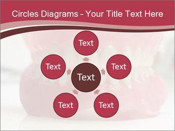 Teeth Model PowerPoint Template - Slide 78