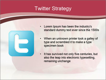 Teeth Model PowerPoint Template - Slide 9