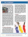 0000089631 Word Template - Page 3