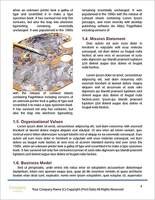 0000089631 Word Template - Page 4