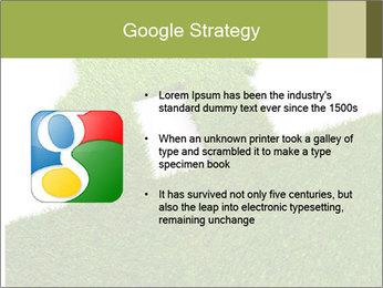 Ideal Grass House PowerPoint Template - Slide 10