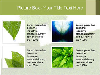 Ideal Grass House PowerPoint Template - Slide 14