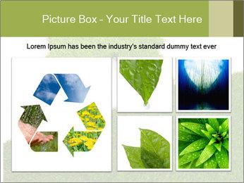 Ideal Grass House PowerPoint Template - Slide 19