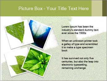 Ideal Grass House PowerPoint Template - Slide 23