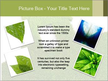 Ideal Grass House PowerPoint Template - Slide 24