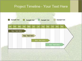 Ideal Grass House PowerPoint Template - Slide 25