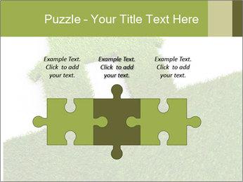 Ideal Grass House PowerPoint Template - Slide 42