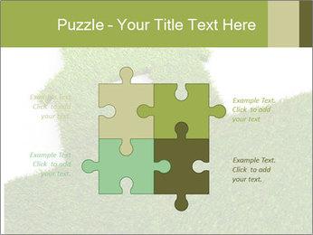 Ideal Grass House PowerPoint Template - Slide 43