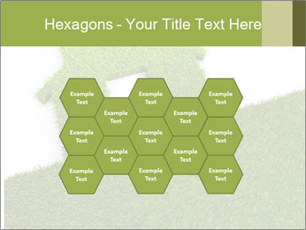 Ideal Grass House PowerPoint Template - Slide 44