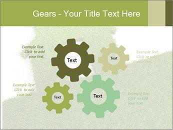 Ideal Grass House PowerPoint Template - Slide 47