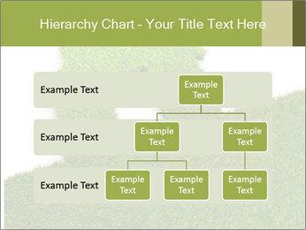 Ideal Grass House PowerPoint Template - Slide 67