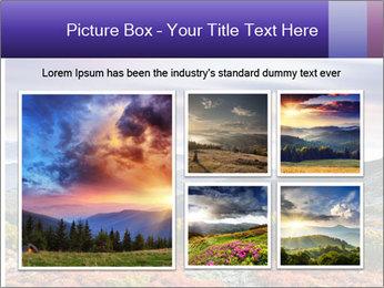 Wildlife Landscape PowerPoint Template - Slide 19