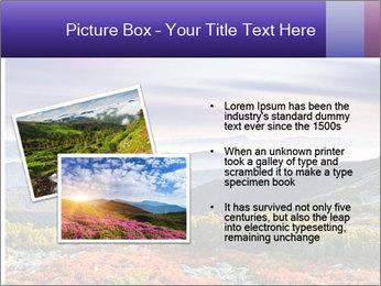 Wildlife Landscape PowerPoint Template - Slide 20