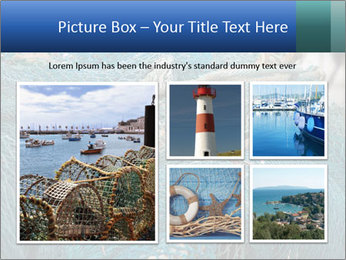 Fishing Net PowerPoint Template - Slide 19