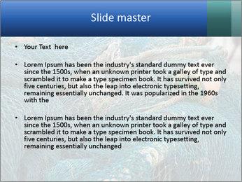 Fishing Net PowerPoint Template - Slide 2