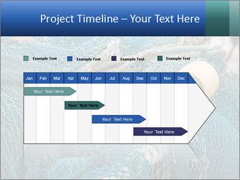Fishing Net PowerPoint Template - Slide 25