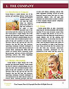 0000089646 Word Template - Page 3