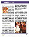 0000089654 Word Template - Page 3