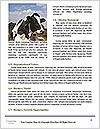 0000089654 Word Template - Page 4