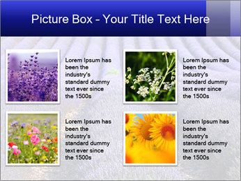 Purple Lavander Field PowerPoint Template - Slide 14