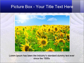 Purple Lavander Field PowerPoint Template - Slide 15