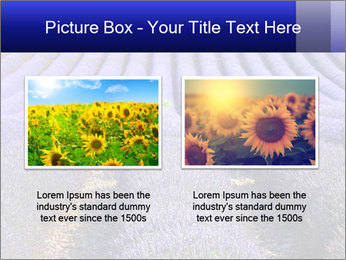 Purple Lavander Field PowerPoint Template - Slide 18