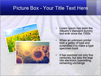 Purple Lavander Field PowerPoint Template - Slide 20