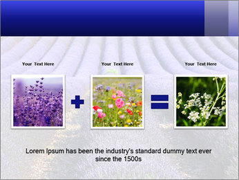 Purple Lavander Field PowerPoint Template - Slide 22
