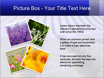 Purple Lavander Field PowerPoint Template - Slide 23