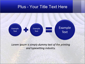 Purple Lavander Field PowerPoint Template - Slide 75