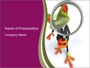 Serious Frog With Magnifying Glass PowerPoint Template