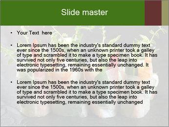 Spring Rolls PowerPoint Template - Slide 2